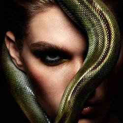 Новый год Змеи - поздравительная открытка