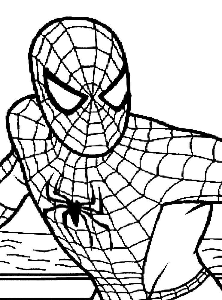 игры человека паука бесплатно