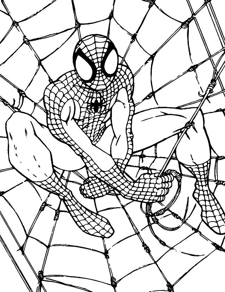 Раскраска с человеком пауком онлайн